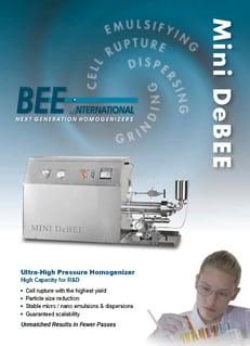 Mini Debee Brochure_Page1